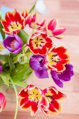 Close up view of flowers