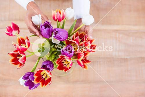 View of hands holing flower