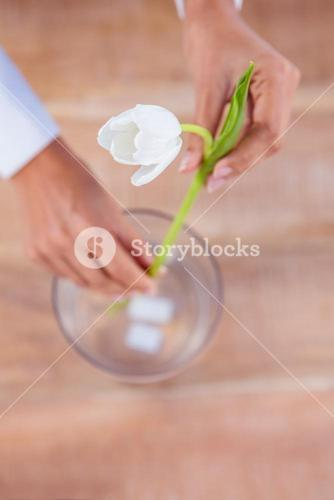Woman putting a flower in a vase
