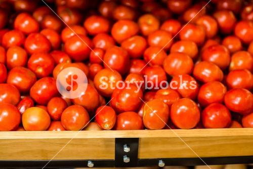 Close up view of fresh tomatoes in boxes