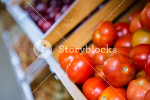 View of tomatoes