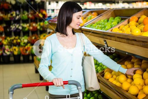 Portrait of a smiling woman doing shopping