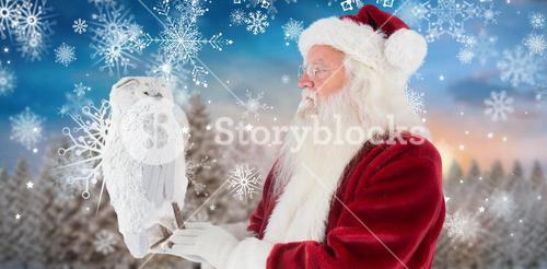 Composite image of father christmas holds an owl