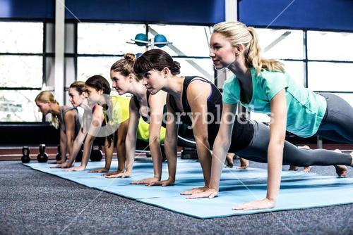 Fit women doing plank exercises