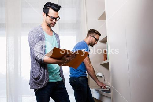 Happy gay couple working together