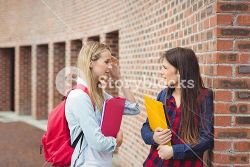 Smiling students talking outdoor