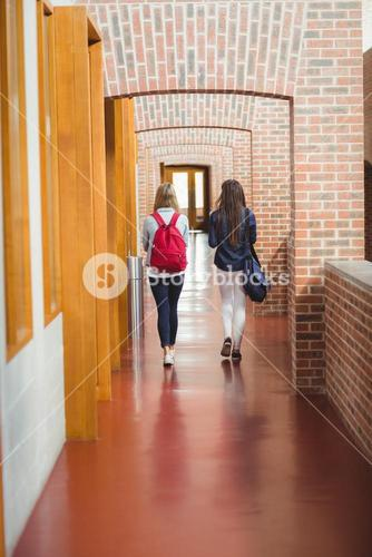 Rear view of students in the hallway