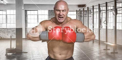 Composite image of angry bald boxer with punching gloves