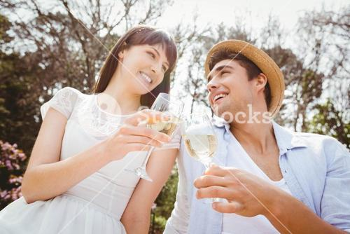 Young couple toasting a wine glass