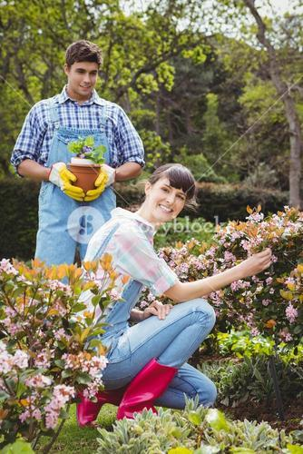 Young couple maintaining plants in garden
