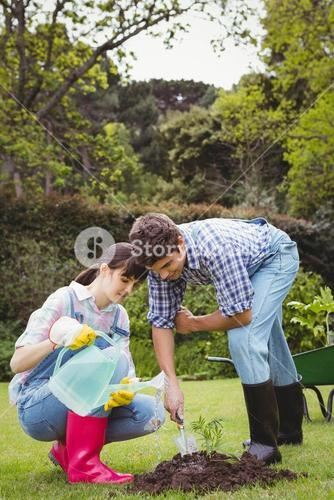 Young couple watering a sapling