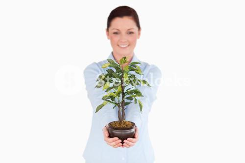 Good looking redhaired woman holding a houseplant while standing