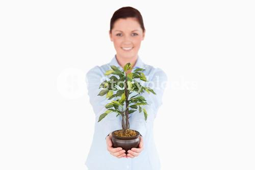 Attractive redhaired woman holding a houseplant while standing