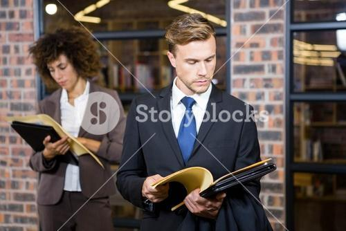 Lawyer looking at documents