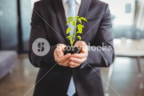 Mid section of businessman holding plant