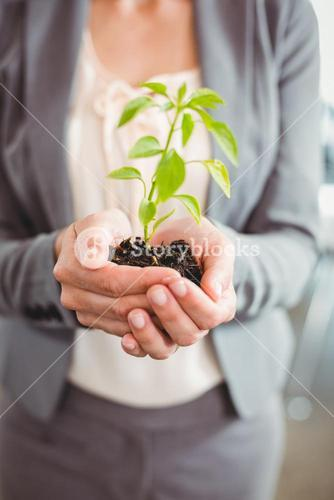 Mid section of businesswoman holding plant