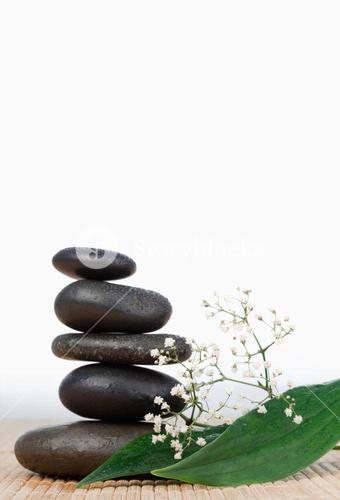 Black stones stack and small white flowers with leaves