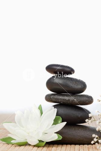 White lotus blossom with a black stoness stack a small white flowers