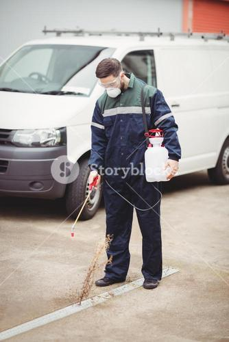 Handyman with insecticide