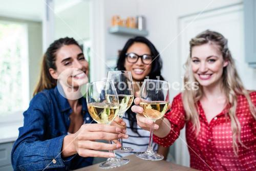 Potrait of happy young female friends toasting wineglass