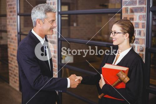 Male and female lawyers handshaking in office