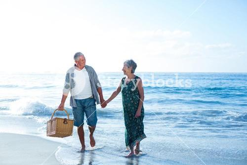 Senior couple holding a picnic basket