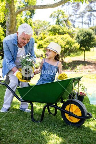 Grandfather and granddaughter holding flower pot