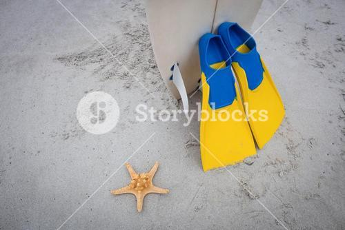 Surfboard with flippers and starfish