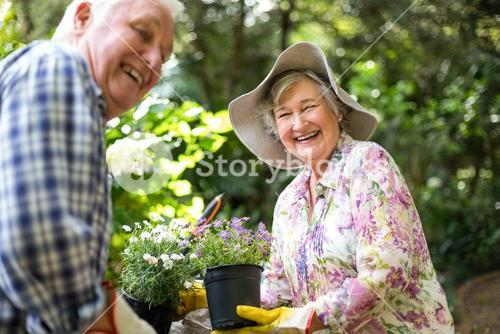 Happy senior couple with flower pots
