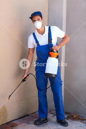Portrait of worker spraying chemical on wall