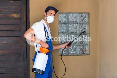 Portrait of worker spraying chemical