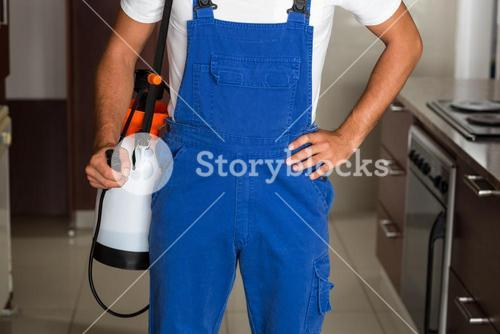 Midsection of pest worker with sprayer