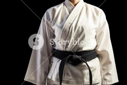 Mid section of karate player
