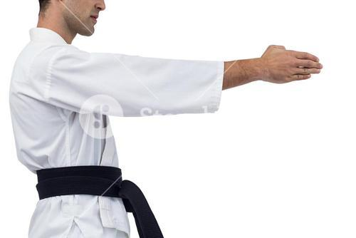 Mid section of fighter performing karate stance