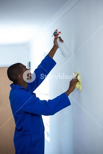 Handyman spraying insecticide on wall