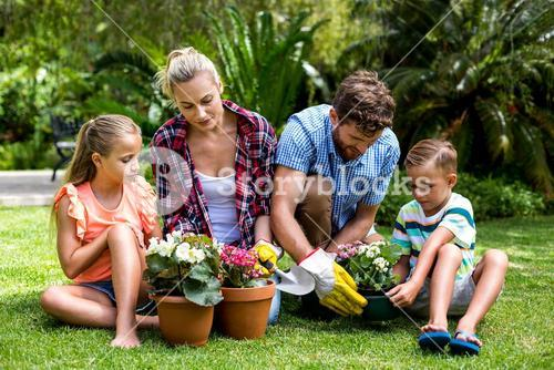 Family gardening with flower pots at yard