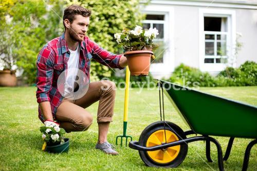 Gardener holding potted plants in yard