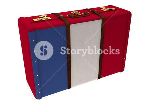 French flag suitcase