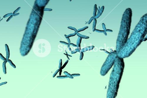 Composite image of image of dna