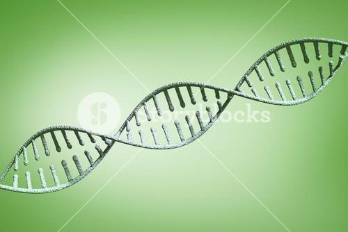 Composite image of view of a dna