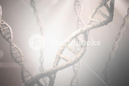 Composite image of view of dna