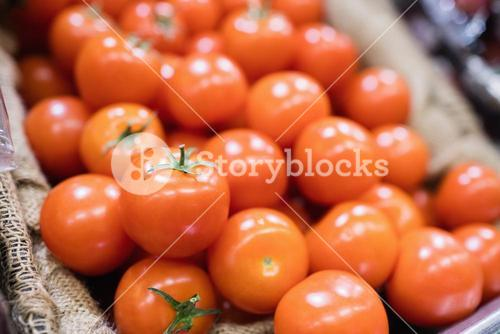 View of tomatoes in shelf
