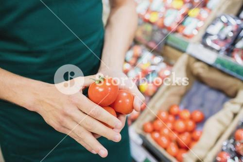 Focus on foreground of man grocer holding tomatoes