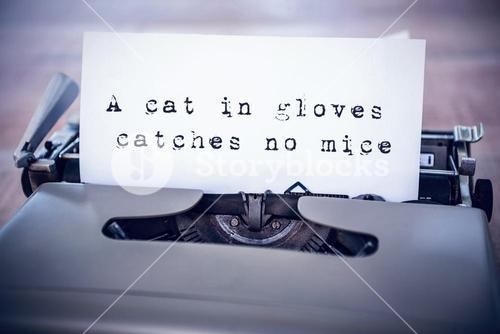 Composite image of the sentence a cat in gloves catches no mice against white background