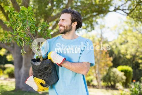 A volunteer man holding plant