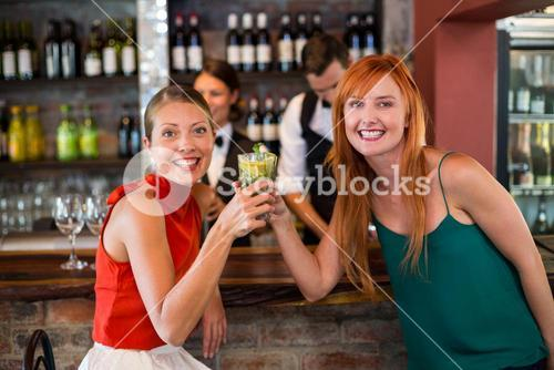 Portrait of happy friends holding a glass of gin in front of bar counter