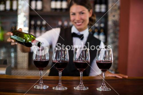 Portrait of bartender pouring a red wine in the glass