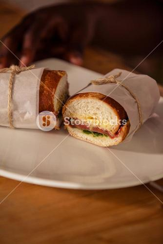 Close up view of sandwich