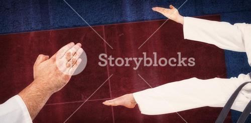 Close-up of karate fighter making hand gesture against overhead view of playing field