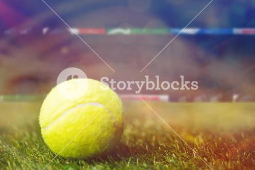 Close up of tennis ball on the grass